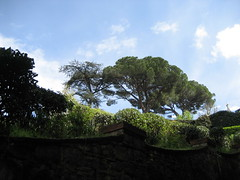 """View of the gardens over the wall • <a style=""""font-size:0.8em;"""" href=""""http://www.flickr.com/photos/36178200@N05/3386767744/"""" target=""""_blank"""">View on Flickr</a>"""