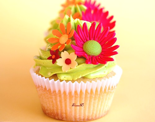 Cupcakes For......
