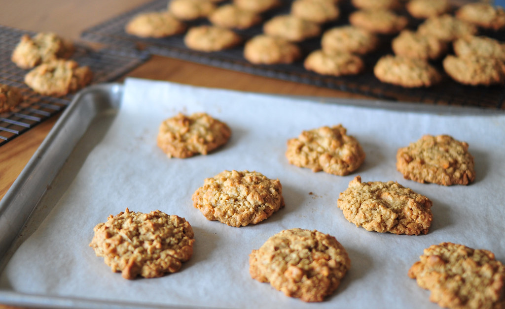 Oatmeal Scotchies (Cookie Jar Project Week 2)