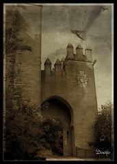 Castillo de Almodovar (Doenjo) Tags: espaa geotagged andaluca crdoba texturas castillos doenjo