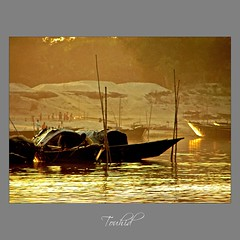 Shesh Bikeler Alo (sytoha / Syed Touhid Hassan) Tags: gold sunrays bangladesh softlight woodenboats bogra countryboat ruralbangladesh goldenreflection lateafternoonglow goldensunrays sariakandi sytoha syedtouhidhassan thejamuna