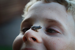On the nose (Kerrie McSnap) Tags: family boy kids children nikon child frog d60 easter2009
