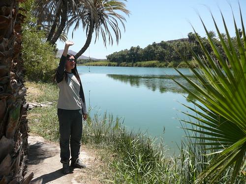 Agua !! Oasis de san Ignacio