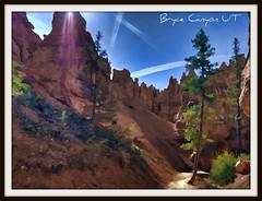 Bryce Canyon National Park 7 (Michael D Martin) Tags: nationalpark bryce brycecanyon ribbet