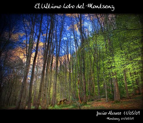 Santa-Fe-del-Montseny-(6)