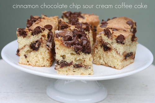 Food Librarian - Cinnamon Chocolate Chip Sour Cream Coffee Cake