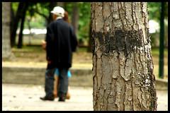 """Tras el arbol (Kevin Vsquez """"Aurinegro en Caracas"""") Tags: park city parque tree persona los venezuela capital ciudad caracas anciano viejo hombre libertador municipio distrito caobos arbos"""