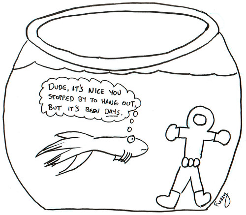 366 Cartoons - 153 - Fish Bowl