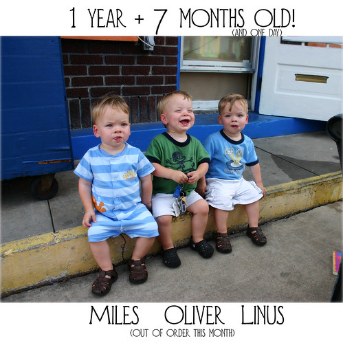 19 months!