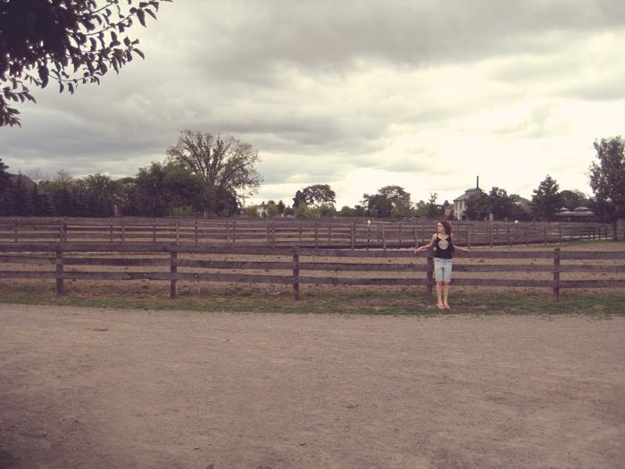 near the working farm