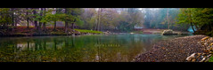 Lothlrien (isayx3) Tags: panorama water colors forest canon river eos stream post stitch pano panoramic lotr 24mm process friday tolkien enchanted pp lothlorien 40d plainjoe isayx3