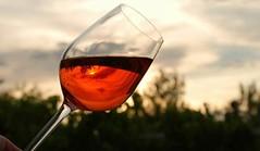 Crece la venta de vinos en Argentina (en volumen)