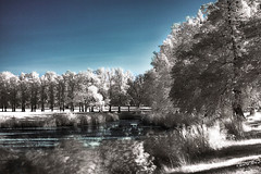 Tranquility in a place called Neverland (darth_bayne) Tags: 50mm pond sweden stockholm canon350d infrared sverige neverland hdr hoyar72 drottningholmpalace vosplusbellesphotos
