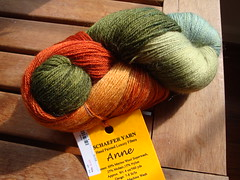 Schaefer Anne Sock Yarn 2