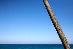tropic (xgray) Tags: ocean blue sky color tree digital canon eos aqua florida palm minimal atlantic trunk 5d minimalism delraybeach canoneos5d ef24105mmf4lisusm uploadx postedtophotographersonlj xgrayvision2009