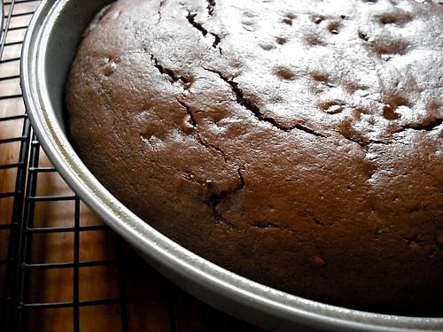 cake resting in pan