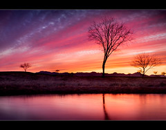 Fire in the sky ... (Rob Overcash Photography) Tags: longexposure trees sunset red arizona sky orange color reflection water silhouette clouds canon purple desert dusk vibrant dramatic cs3 digitalblend 2470f28l 50d 3exposure robotography vosplusbellesphotos robovercashphotography lpvibrant