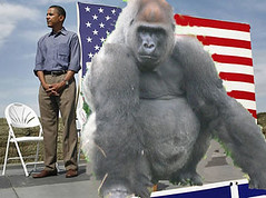 Obama and the 800 lb gorilla
