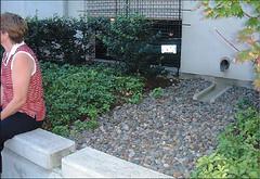 containerized bio-retention garden (courtesy USEPA)