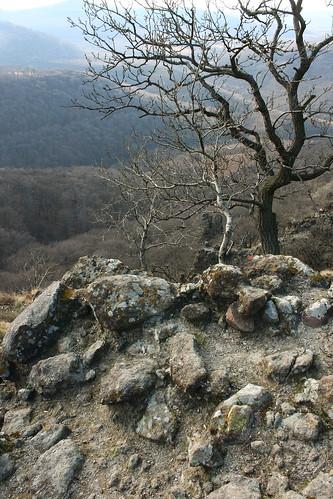 Dunakanyar, 2009. 03. 21. 0023