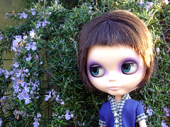 Velvet en el parque