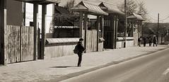 pmc_20090326_0169_r (Cezar Popescu) Tags: romania rou putna radauti rdui