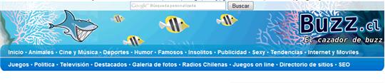 buzz.cl