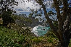 Pfeiffer State Park, California (Ninja Mom) Tags: california pacificocean hwy1 pfeifferstatepark scenicview