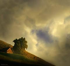 dream place (Heilah Alnasser) Tags: tree grass clouds photoshop nikon hill ps dreamy d100 blending d300 heilah theunforgettablepictures theunforgettablepicture heilahn