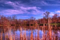 Lenape Park Pond HDR (diverpow) Tags: park wild fish nature wet water photography photo newjersey nikon marine peace wildlife union nj jersey kenilworth unioncounty lenape lenapepark nikond80 unionnj unioncountypark newjerseywildlife