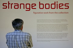 Strange Bodies: Figurative Works from the Hirshhorn Collection