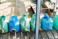 sunny side #3 (silent-master) Tags: blue japan agfa nikonf3 wateringpot vista400 nokton58mmf14