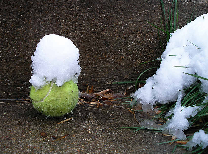 Tennis Ball with Snowy Hat