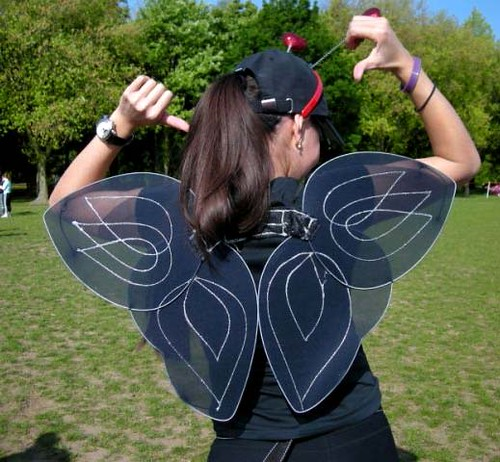 difc 2009 paola butterfly wings