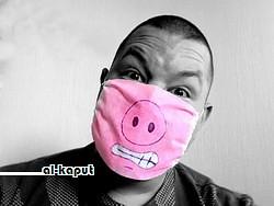 Kawan babi