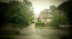 Rainy day Junebug Pinhole