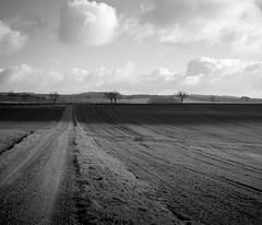 Ilsenburg (Nouveau Noir) Tags: light white black clouds shade fields pentaxk10d smcpentaxda50135mmf28edifsdm nouveaunoir