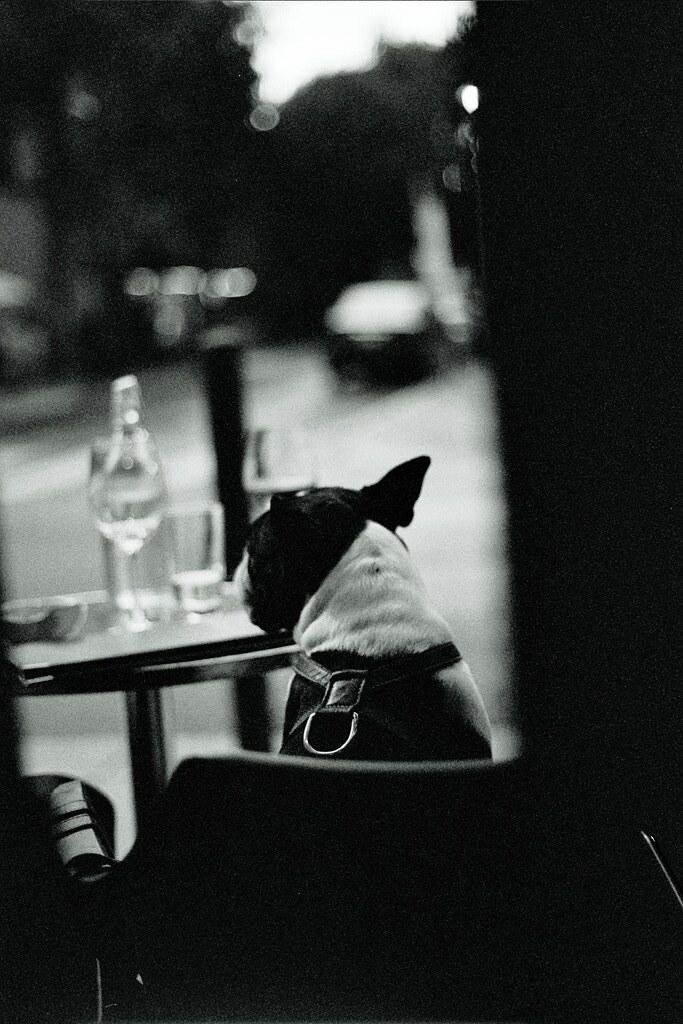 quiet drink