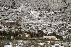 IMG_8099 (Miguel Angel Mora (GSi_PoweR)) Tags: españa snow andalucía carretera nieve nevada sunday bosque granada costadelsol domingo maroma málaga mountainroad meteorología axarquía puertomontaña zafarraya sierraalmijara cañosalcaiceria