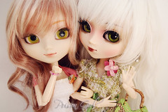 Victoria & Mikuru - Pullip Blanche & My Melody (-Poison Girl-) Tags: new white green doll dolls eyelashes victoria pale sanrio wig pullip mm custom blanche pullips poisongirl mymelody mikuru eyechips junplanning rewigged rechipped sbhm pullipblanche pullipmymelody pullipmm