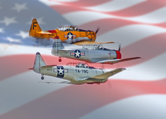 Remembered (Beefus) Tags: california airplane remember flag aircraft wwii navy airshow worldwarii memorialday t6 hollister snj t6texan 2011