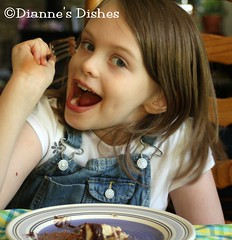 Chocolate Covered Vanilla Cheesecake With A Chocolate Chip Cookie Crust: Sous Chef Approved!