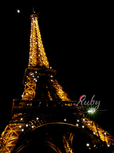 Eiffel tower_07_night view