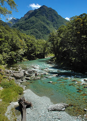 Routeburn river, Routeburn Track, Otago/Fiordland, New Zealand (goneforawander) Tags: park new trip newzealand plant water forest trekking river walking landscape outdoors island bush flora nikon rainforest scenery stream track natural native hiking walk south side great d70s conservation hike southern zealand alpine national backpacking valley nz otago queenstown species wilderness doc tramping department tramp fiordland routeburn aoteoroa goneforawander