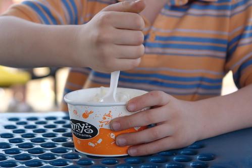 Amy's Ice Cream