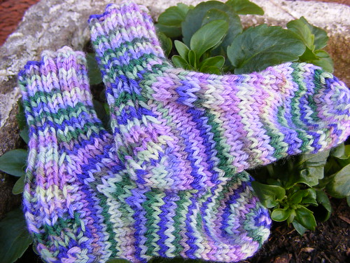 Crocus Baby Socks 2