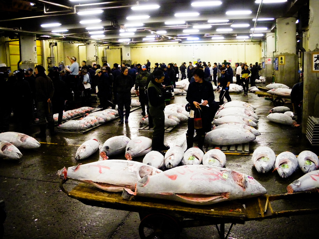 Selling the frozen tuna at the Tsukiji Fish Market last March.