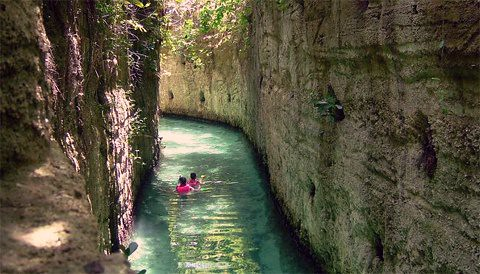corals line canal walls