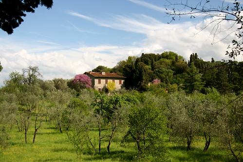View from Parco di Villa Strozzi