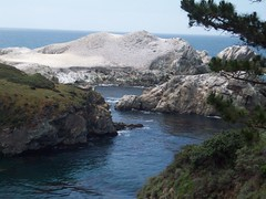 Looking toward Bird Rock (tmrae) Tags: coast monterey pacific pointlobos